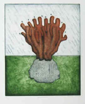 artist Thomas Tighe O'Donohue, born 1942. Color etching Monsoon, coral, numbered and signed by the artist.
